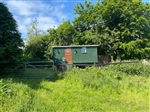 Orchard Shepherd Hut